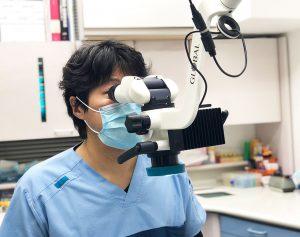 マイクロスコープを使った診療